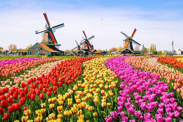 Zaanse Schans und Volendam (NL)