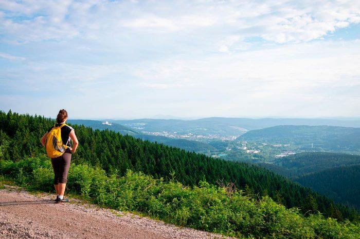 Thüringer Wald, Friedrichsroda
